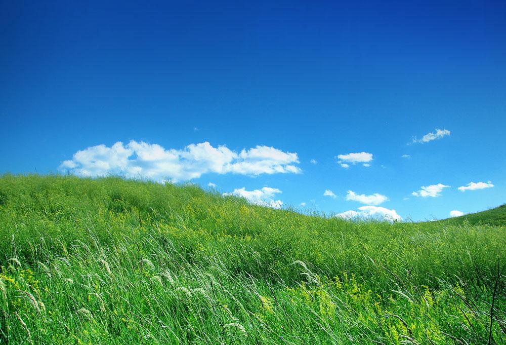 Ozonclean Zernike rispetta la natura
